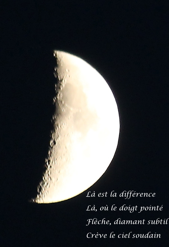 la-est-la-difference-1.jpg