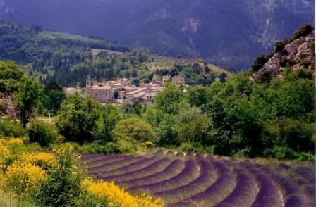 paysage-de-provence.jpg